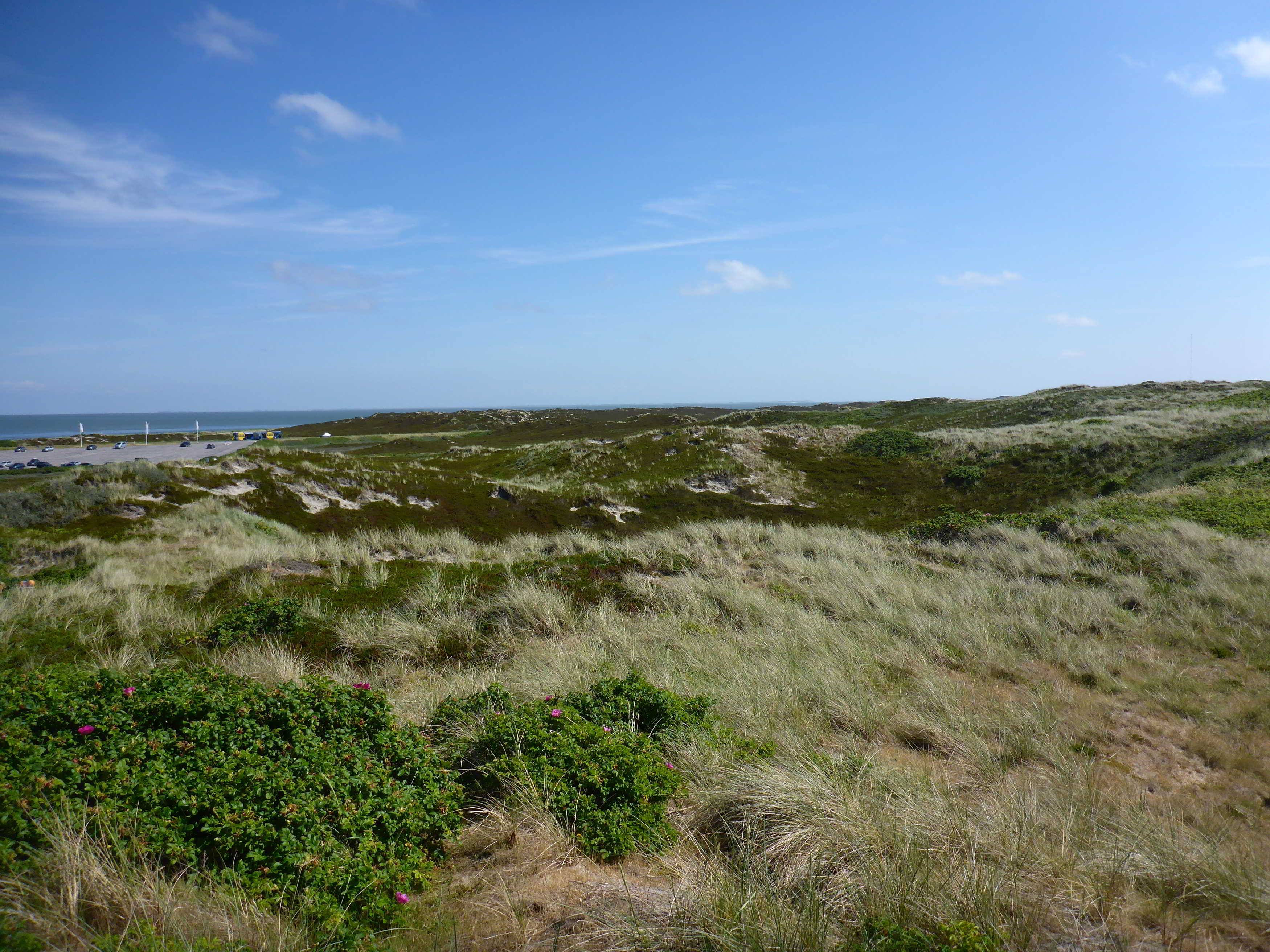 Sand Dunes stretch the entire coastline of Sylt
